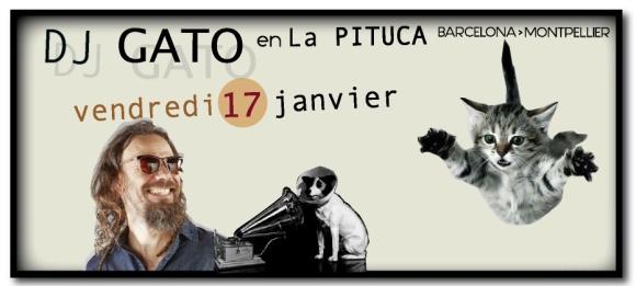 GJ GATO VEND 17 janvier LA PITUCA