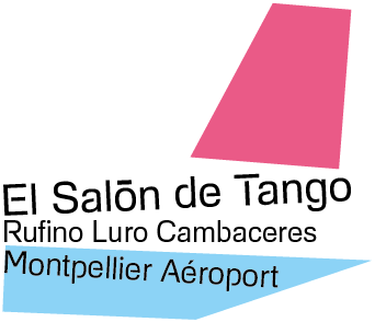 LOGO SDT AVION